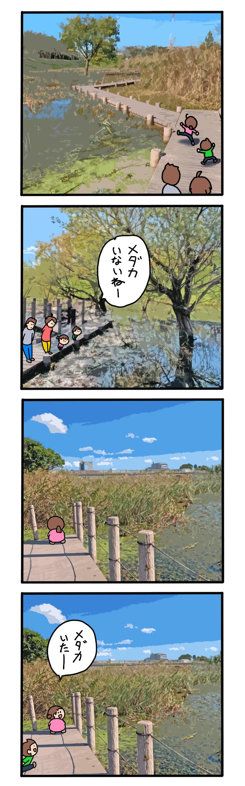 三橋総合公園のWEB漫画メダカいた